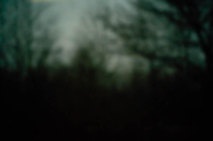 Nepenthe 3